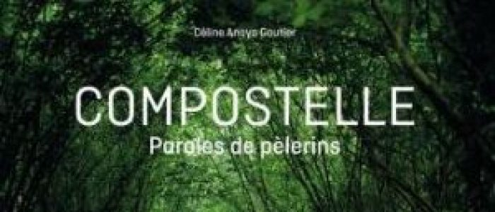 Céline Anaya Gautier « Compostelle paroles de pèlerins » éditions Flammarion.